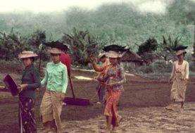 indonesian workers bali