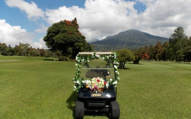 Wedding bali Buggy