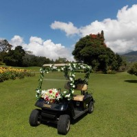Honeymoon Buggy bali