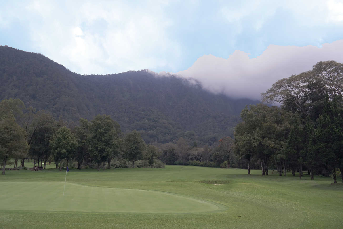 hole 8 Green at Handara