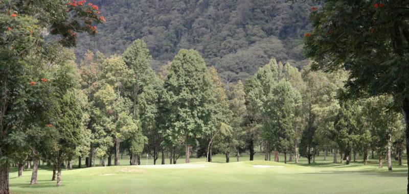 Hole 11 at Handara Golf Resort