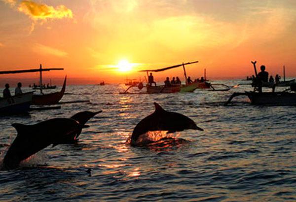 lovina dolphin bali