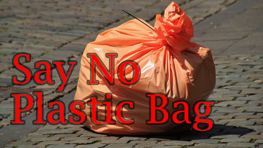 Say-No-To-Plastic-Bag in the north Bali