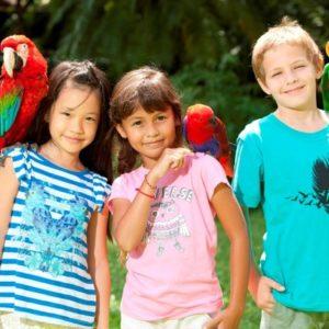 bird-kids