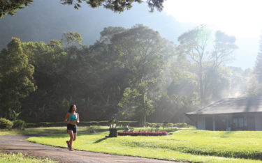 Refresh-your-mind,-body,-and-soul-by-jog-with-fresh-cool-air-and-a-view-to-remember-in-Handara